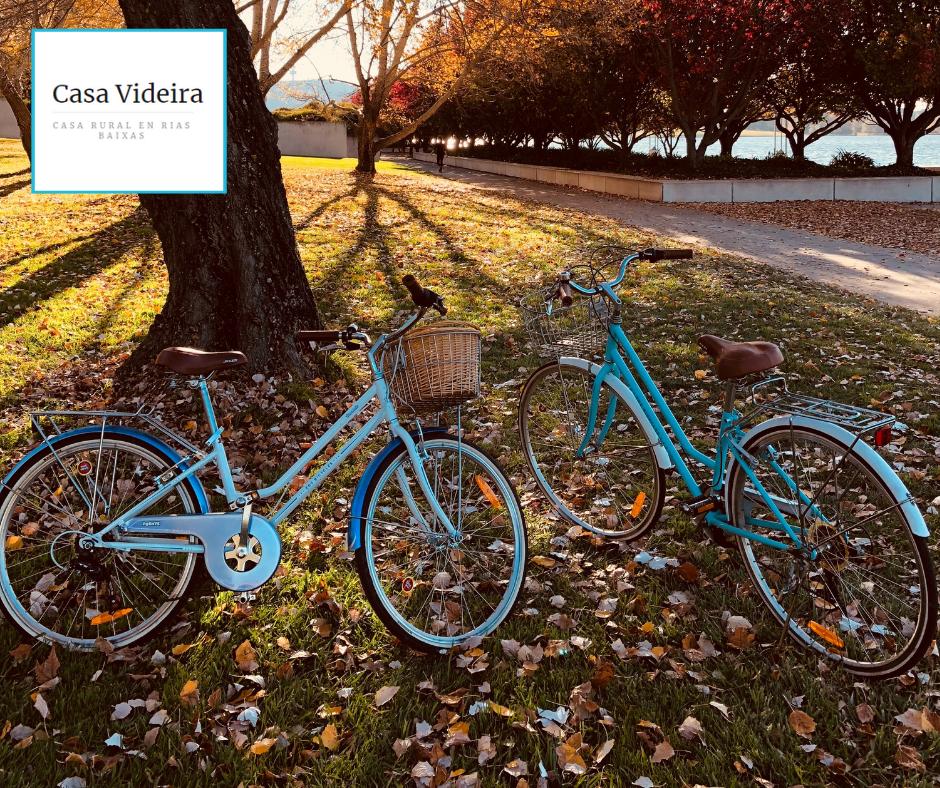 Imagen de alquiler de bicicletas en Casa Videira